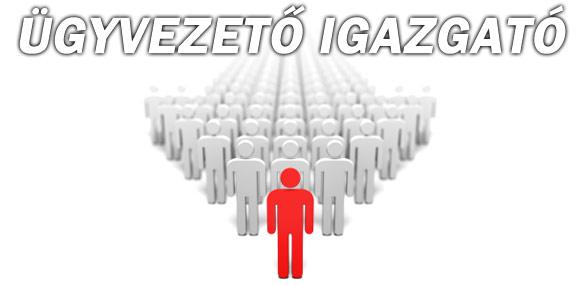 Autodvd.hu Üzletvezető